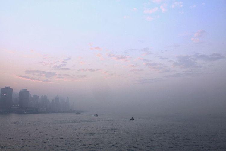 希望在明天 Foggy