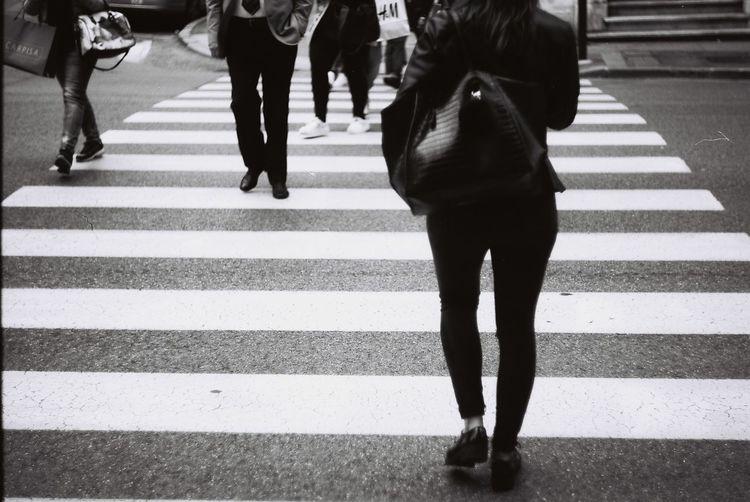 City Complicated World Italy, Trieste People Street Walking Zebra Crossing Zebrawalk