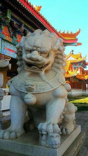 Foo Dog Shrines & Temples Buddhist Temple Early Morning