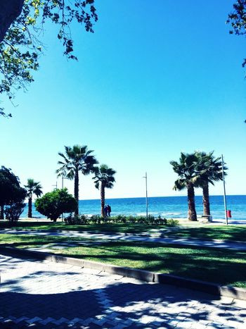 Güzel Yalova'm 😊 Beautiful Beuty Of Nature Blue Sky Blue And Green Huzur Mavi Sahil Yalova Turkeyphotooftheday EyeEm Best Shots Eye4photography  EyeEm Best Shots - Nature Like Beach Beautiful Day Beachphotography Photooftheday