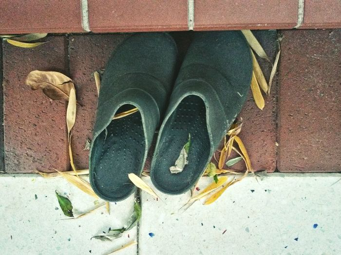 Shoe Pair Low Section Close-up No People Outdoors Day Stones Leaves Autumn Autumn Colors Leaf Green Green Shoes Shoes Red White Garden Shoes