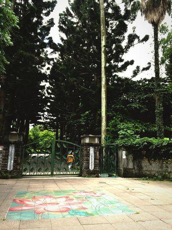 台湾旅行にて 台湾 台北 Taiwan Taipei 植物園