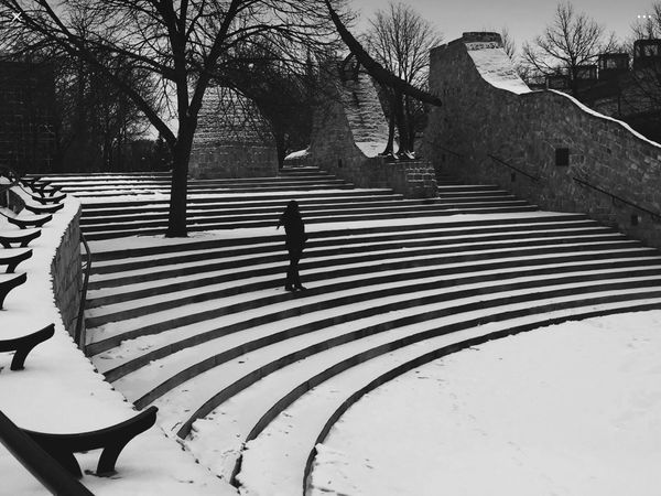 B&W NewEyEm Real People Tree Walking Leisure Activity One Person Steps Full Length Steps And Staircases Architecture Shadow Lifestyles Nature Outdoors