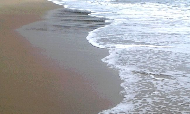 Beach Sea Wave Sand No People Water Nature Beauty In Nature Landscape