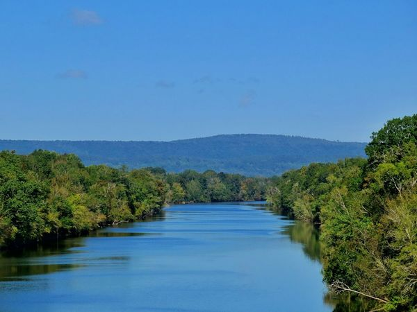 Clear Sky Sky Nature Day Outdoors Water Blue Tree No People River Rivers Landscape From Bridge Shot From Above  High Angle View Alabama Outdoors Alabama River