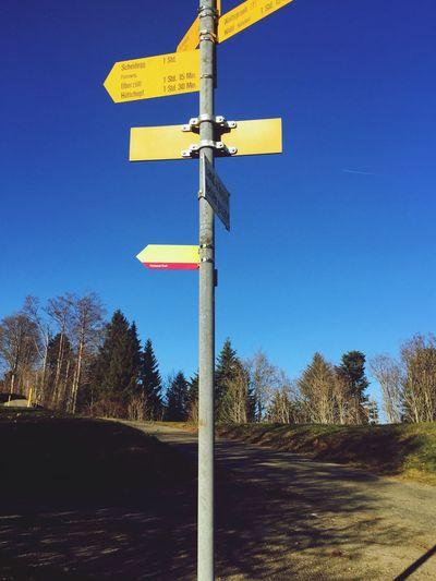 at Alp Scheidegg, Wald, Switzerland, sign post, nature lover, autumn, colors, pristine nature,