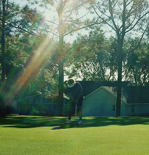 Sport Green Color Putting Green Playing Field Golfcoursesofeyeem Golf Course Sunthrutrees Outdoors Illuminated Beauty In Ordinary Things Triksaphotography Greatphotosofeyeem Nature Strangersinframe Day Nature Low Angle View Morninginflorida Ominous Abstract Scenics Backgrounds Beauty In Nature Funforthem