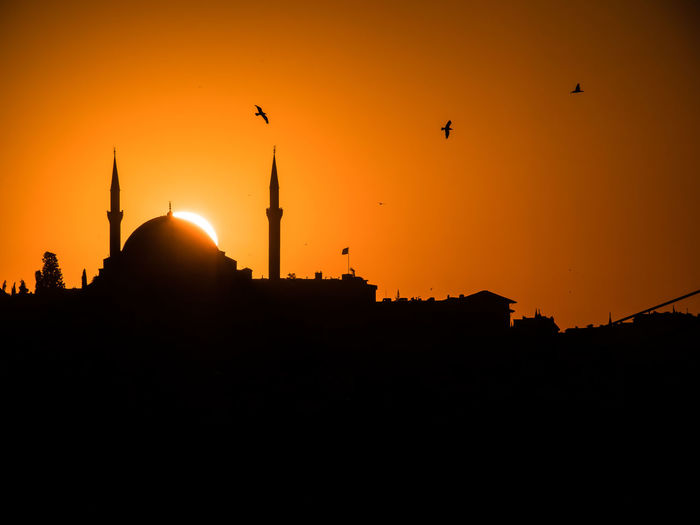 Panasonic  Animal Themes Animals In The Wild Architecture Beauty In Nature Bird Building Exterior Built Structure City Domestic Animals Dusk Flying Gh5 Low Angle View Mosque Nature No People Orange Color Outdoors Seagull Silhouette Sky Sun Sunset Travel Destinations