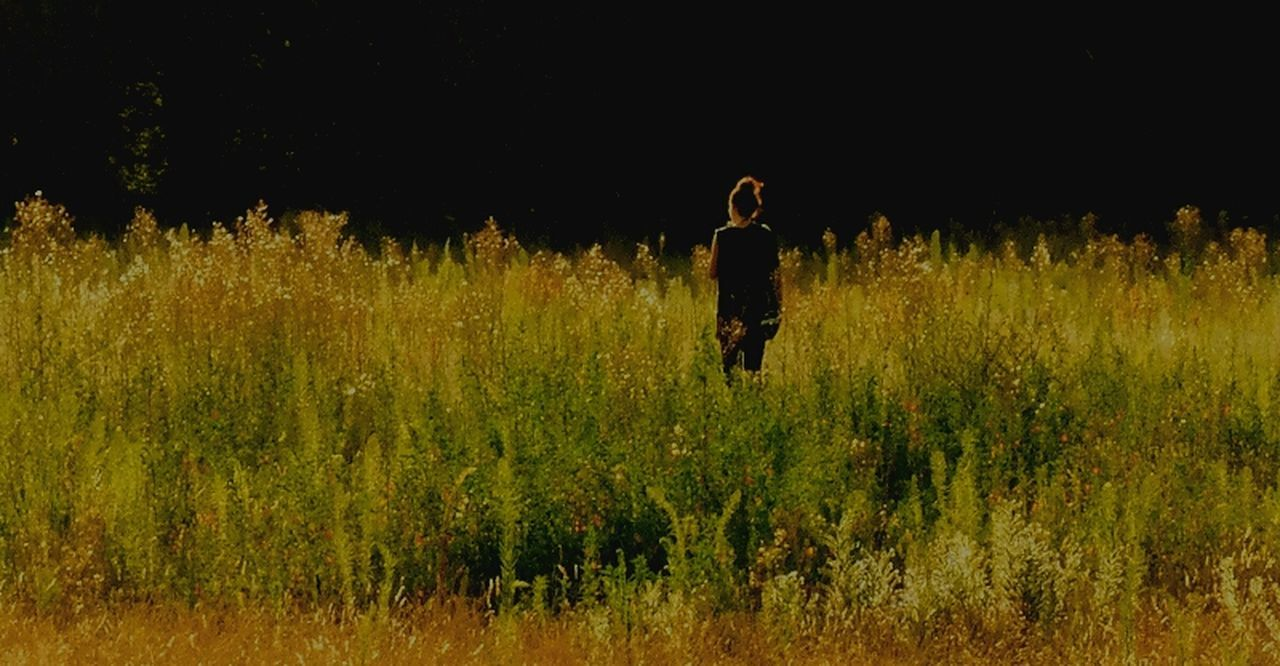 growth, field, nature, plant, standing, one person, full length, grass, outdoors, tree, real people, night, beauty in nature, young adult, adult, people