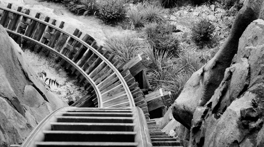 Looking down the big hill on Disney's Expedition Everest roller coaster DisneyWorld Looking Down Orlando, Florida- Disney Attraction Black And White Photography Curved Tracks Day Expedition Everest Family Fun High Angle View High Speed Nature No People Outdoors Park Ride Roller Coaster Themed Attraction Track Wide Shot