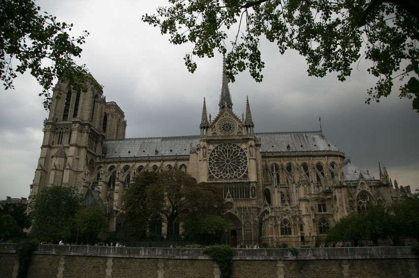 Damous cathedral Notre Dam de Paris in Paris, France Beautiful Cathedral Church Cloudy France Notre Dame De Paris Paris September Travel Architecture Building Exterior Built Structure Day French History No People Outdoors Parisien Life Place Of Worship Rainy Religion Sky Spirituality Travel Destinations Tree