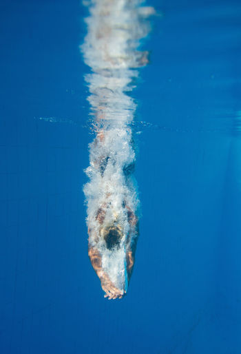 Diver Leaves Trace Of Bubbles 20s Athlete Copy Space Diving Jump Sunlight Swiming Water Sport Blue Bubble Caucasian Day Dive Motion Outdoors Pool Splash Splashing Sport Summer Swimming Pool Underwater Unusual Angle Water Young Women