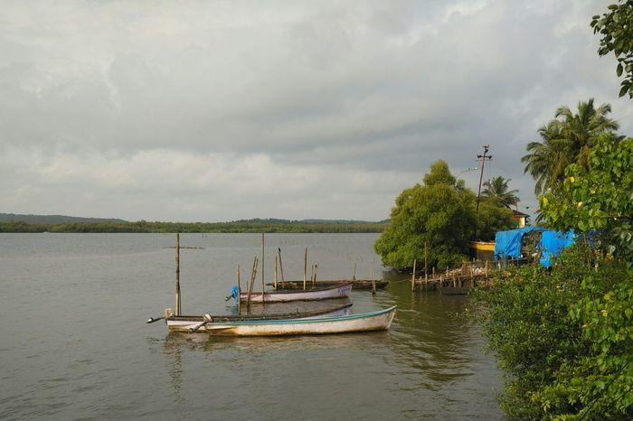 Boats anchored in the Mandovi River near Ribandar, Goa, India Panjim Panaji Boat Goanscape Scenery Goan Goa Tourism Goa Goa India Water Fishing Boat Overcast Scenics Nature Tranquility Tranquil Scene Mandovi River Mandoviriver Mandovi Anchored Rowing Boat Rowboat Canoes Boats Ribandar
