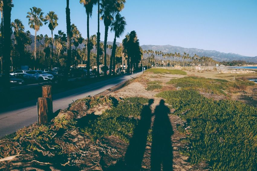 Together in Santa Barbara, Nov. 2015 Tree Palm Tree Growth Outdoors Water Beach Nature Beauty In Nature Scenics Sky Landscape No People Day Architecture Golf Course Green - Golf Course Fujifilm Xseries Xt2 Parkwayberlin VSCO