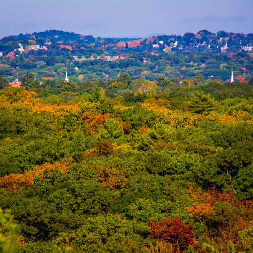 The Fall Colors are slowly filling in at Blue Hills Reservation Eye4photography  Streamzoofamily
