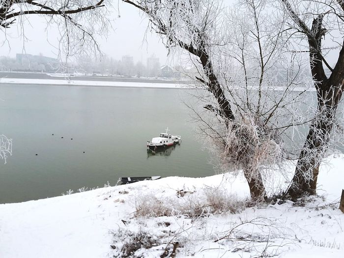 Reflection Water Lake Winter Tree Nature Cold Temperature Day Snow Outdoors No People Beauty In Nature Sky Snow ❄ River Sava Boat Live For The Story