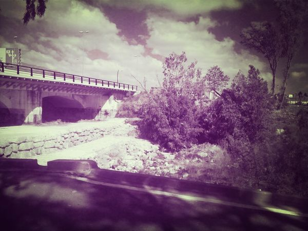 Nature Dry River Trees Bridge