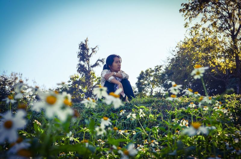 Low angle view of young woman sitting by plants against clear sky at park