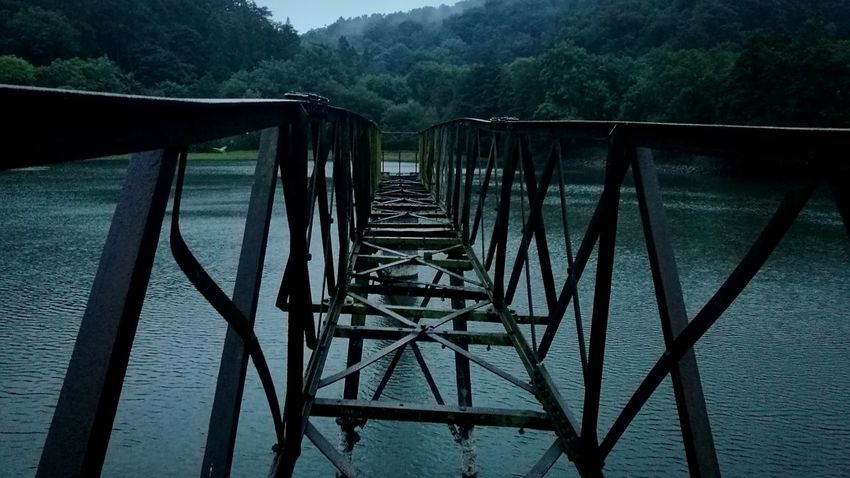 Lake Outdoors Water Bridge - Man Made Structure Connection Nature Tree Day No People Beauty In Nature Sky Scenics Tranquility Landscape Nature Wet Fog Tree Beauty In Nature The Way Forward Outdoor Pursuit Lost In The Landscape
