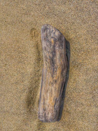 Treibgut Beach Sand Backgrounds Full Frame Textured  Pattern High Angle View Close-up