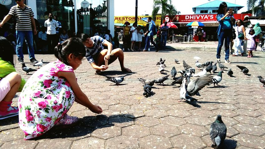 People Together Batu Caves Taking Photos Kids Being Kids July Showcase Indiantemple Showcase July Taking Photos Tourist Attraction  Pigeons Tourists