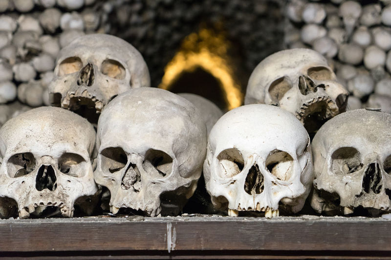 Skulls stacked with bones in an ossuary in Cezch Republic. Bones Collection Creativity Day Full Frame History Human Representation In A Row Island Large Group Of Objects Memories Outdoors Repetition Skull Statue Stone Material The Past