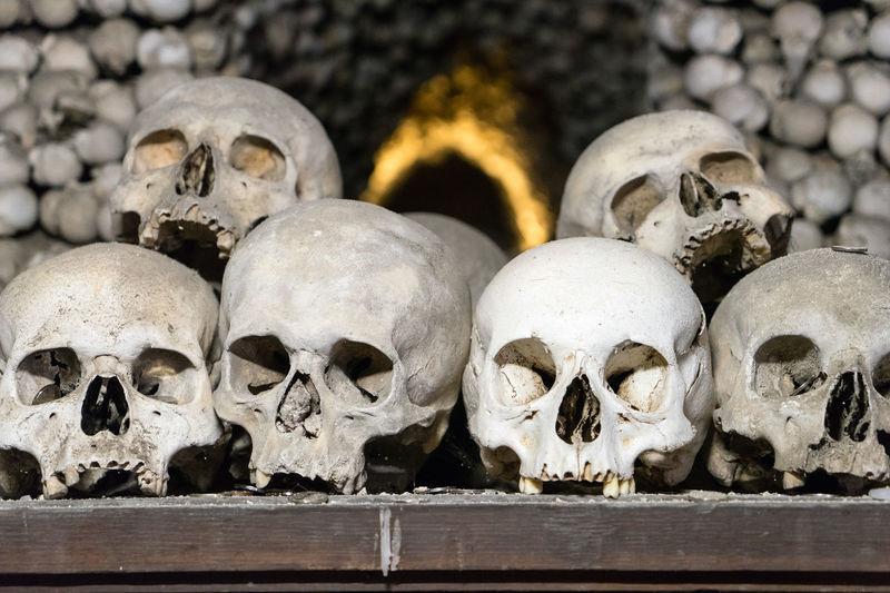 Human Skulls On Table