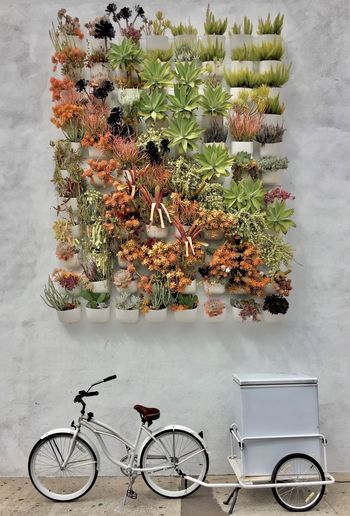 Beauty In Nature Bicycle Bicycles Bike Cart Day Flower Freshness Growth High Angle View Nature No People Outdoors Plant Refridgerator Urban Urban Gardening Art Is Everywhere The Street Photographer - 2017 EyeEm Awards