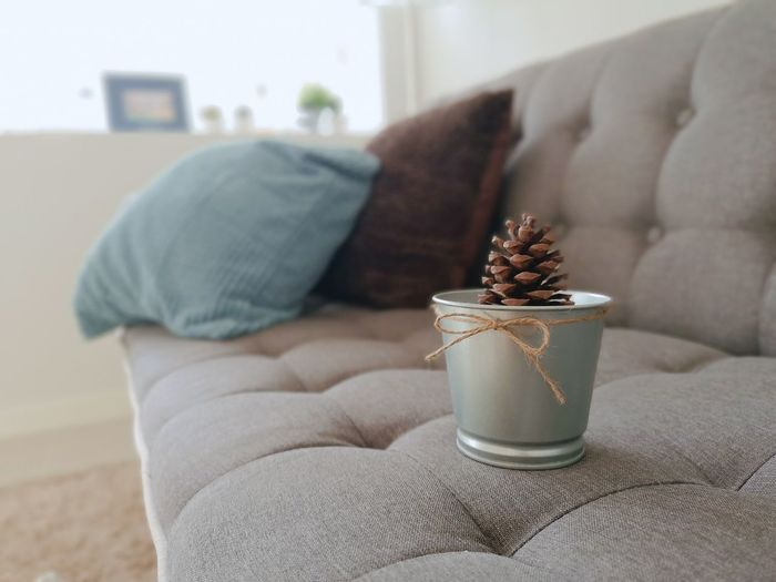 Living Room Sofa Close-up Furniture Home Showcase Interior Armchair Wool Knitted  Potted Plant Holiday Villa Woolen Floor Lamp Lamp Shade  Model Home Night Table Needlecraft Product