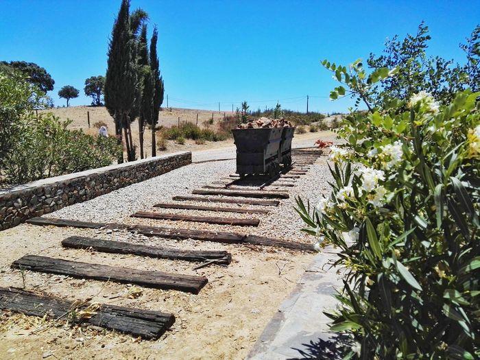 Day Sky Outdoors No People Clear Sky Tree Nature Mine Rail Old Mértola Alentejo