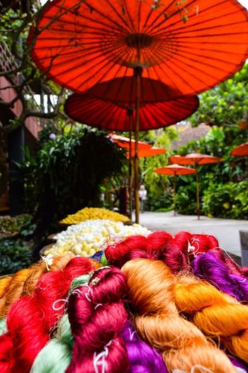 Thai silk EyeEmNewHere Silk Thailand Multi Colored Red No People Wool Day Outdoors Close-up