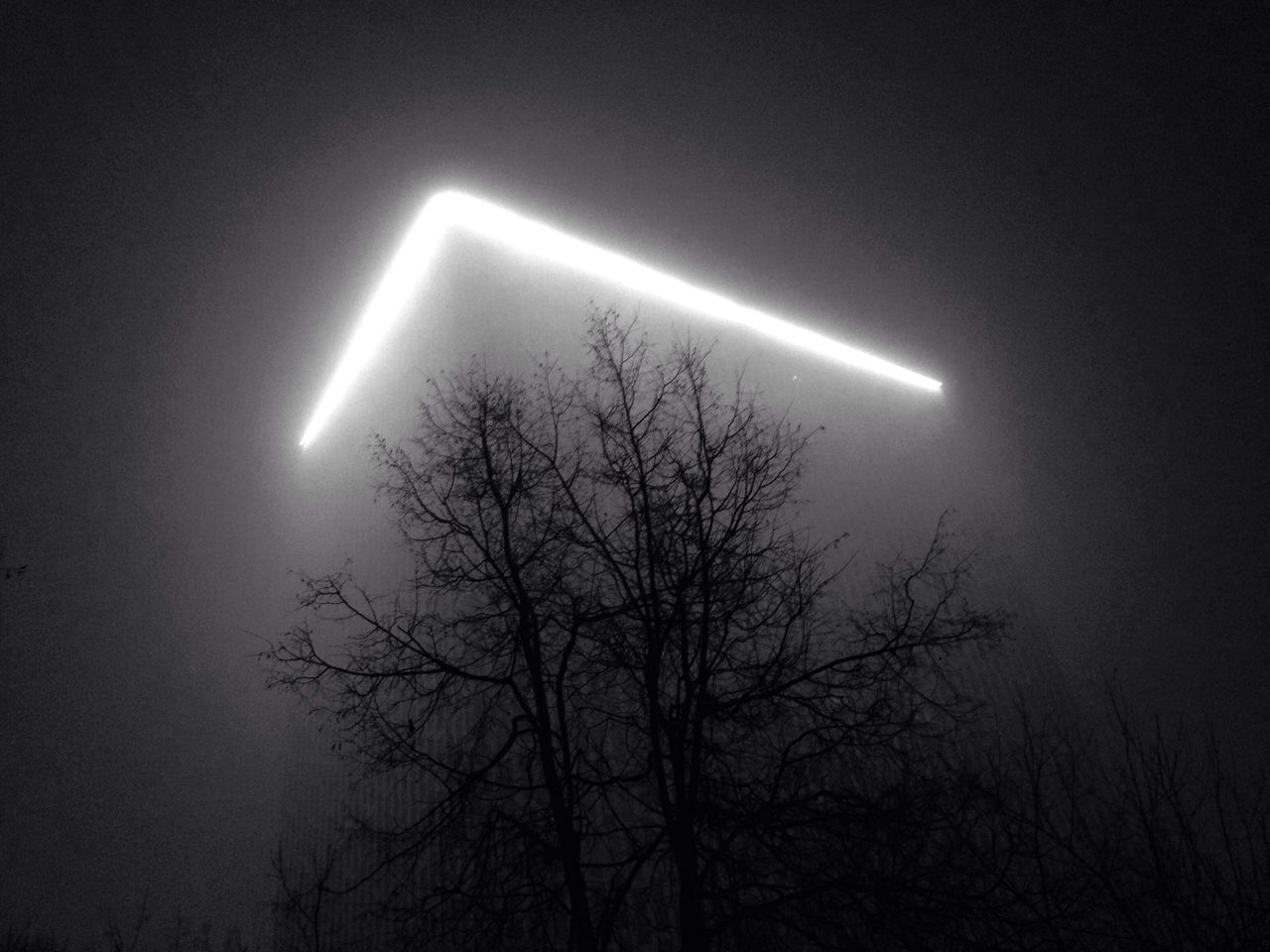 night, low angle view, no people, bare tree, illuminated