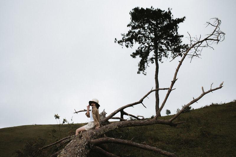 Woman sitting on fallen tree against sky