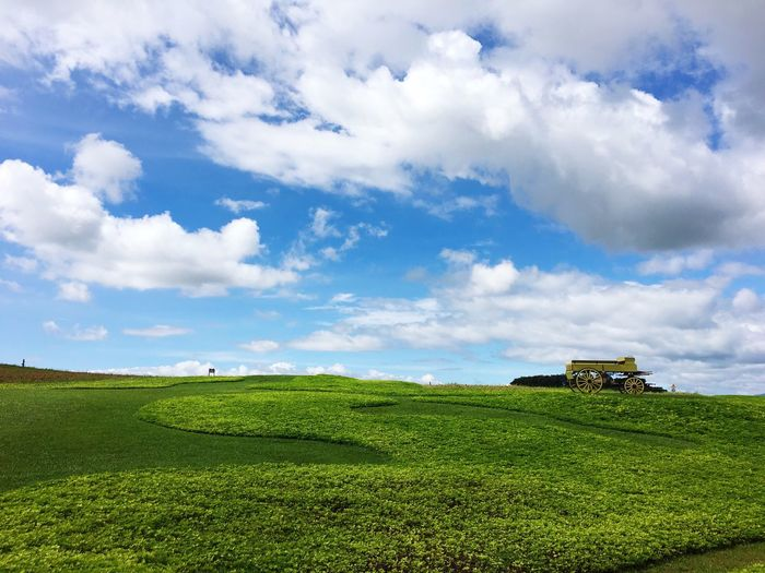 Sky Cloud - Sky Sky Plant Green Color Field Agriculture Land Landscape Beauty In Nature Growth Farm Day No People Nature