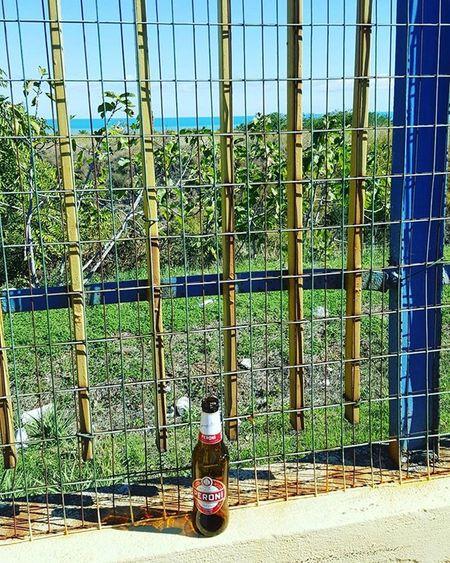 Birra con sfondo di mare 😅 @peroniperterra Peroni Peroniperterra Peronistyle Peronibeer Birraperoni Birra Beer Italianbeer