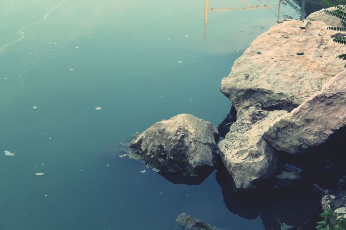 Rock - Object Rock Formation Seascape Lake #photography #naturelove Nature Photography Natureforms #Creativity  #Relaxing #effect Light Water UnderSea Sea Life Underwater EyeEmNewHere The Great Outdoors - 2018 EyeEm Awards