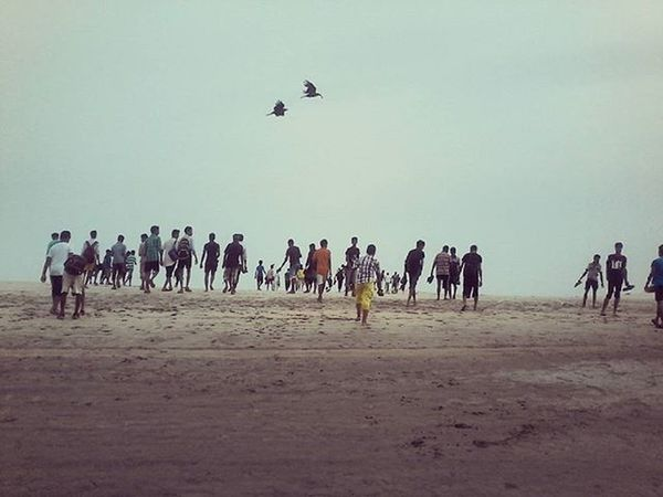 And the birds fly to freedom. Fieldtrip Digha The Essence Of Summer- 2016 EyeEm Awards The Essence Of Summer