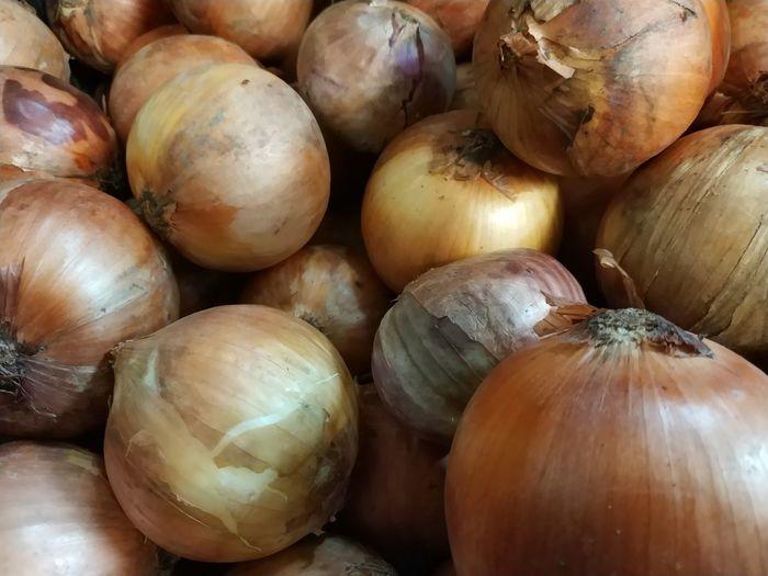 Onions Full