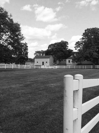 There's nothing I love more than spending time at the stable, especially after we mow the pastures, smells awesome! Black And White Photography Black And White Country Life Horse Stables Grass Fence Pasture Stables Barn Tree Sky Day Outdoors Cloud - Sky No People Nature Architecture