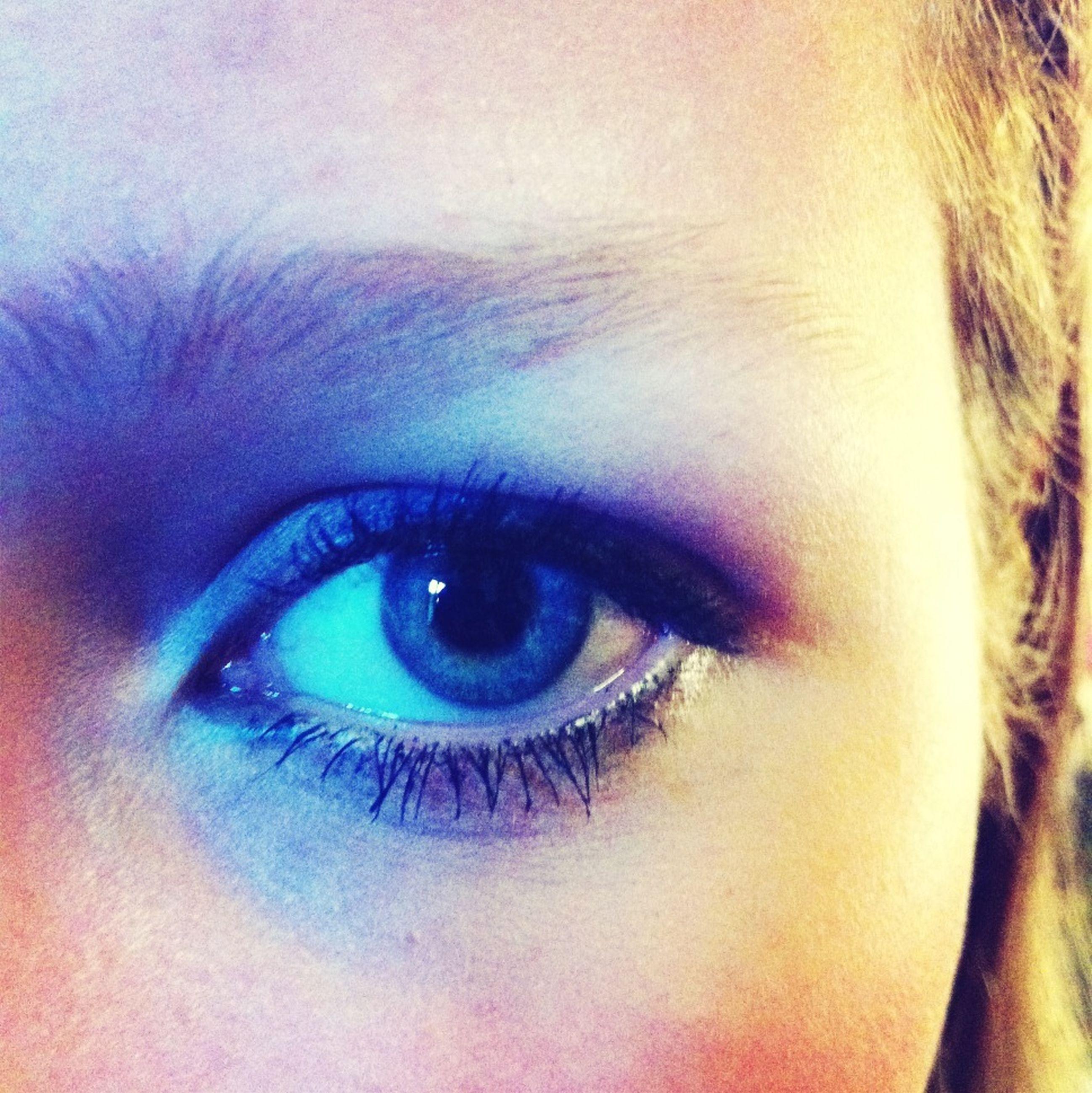 human eye, looking at camera, eyelash, close-up, portrait, human face, headshot, eyesight, lifestyles, young adult, human skin, sensory perception, part of, eyebrow, eyeball, iris - eye, person
