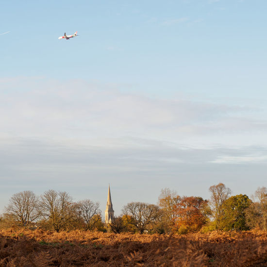 Plane above Richmond Park (TW10) flying towards Heathrow, London Autumn Autumn Colors Postcode Postcards Richmond Park, London TW10 Autumn Colours Beauty In Nature Day Flying Landscape Mid-air Nature No People Outdoors Scenics Sky St Matthias Church Tree
