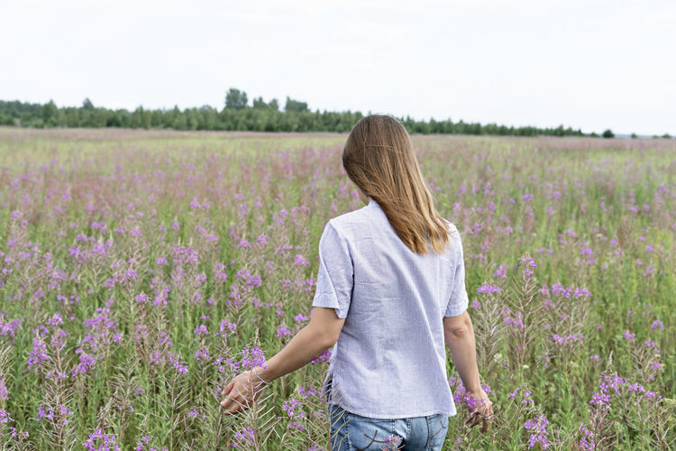 Rear view of young blond woman  standing in field among flowers of fireweed, beauty in nature