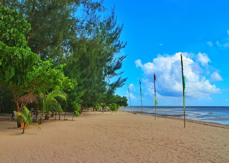 Green or blue? Sea Beach Tree Blue Sand Nature Water Sky Sunlight Landscape Outdoors Beauty In Nature Tropical Climate Shadow Tranquility Scenics Seascape Philippines Cagbalete Island Cagbaleteisland Cagbalete