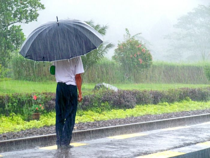 Rear view of a man standing in rain