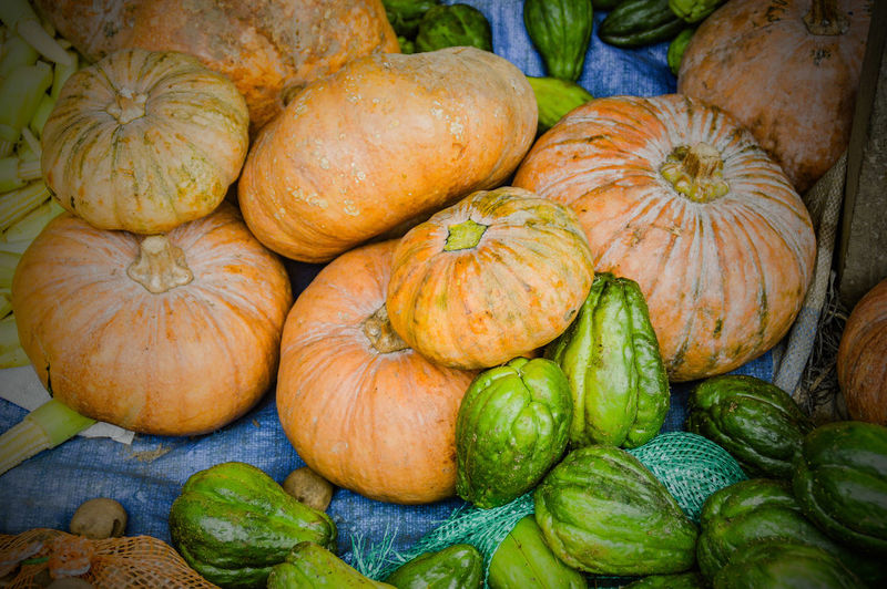 pumpkins and more Agriculture Harvest Season Harvest Farming Farmer's Market Halloween Pumpkin Food Vegetable Food And Drink Market No People Healthy Eating Squash - Vegetable Freshness Backgrounds Gourd Nature Outdoors Close-up
