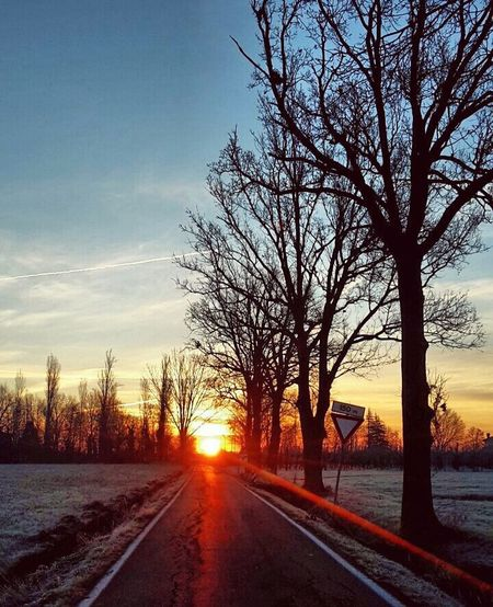 Snow ❄ Tree Sky_collection Skyandsand Road Sunset LastDay Nature Running Time Spectacular Bestpic Lovephotography  Freedom Picoftheday Landscape Beautiful View