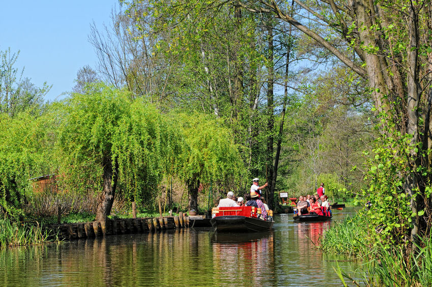 People visiting the Spreewald with its landscape of spree river and forests, meadows. typical was to explore it by tourist boat. Adults Only Boat Brandenburg Canoe Channel Day Germany Landscape Leisure Activity May Mode Of Transport Nautical Vessel People River Riverscape Rowing Boat Spree Spree River Spreewald Springtime Togetherness Tourism Tourists Transportation Travel Destinations