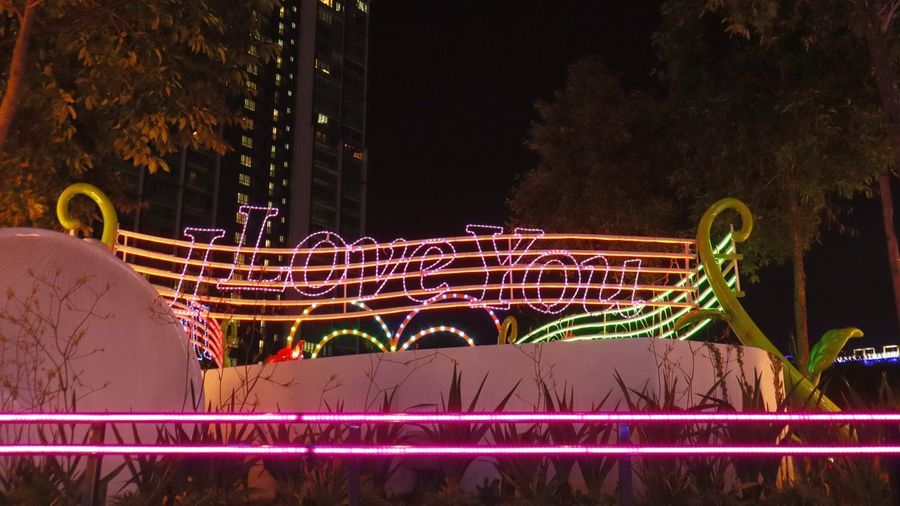 Light trails in park at night