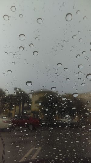 Day Sky Wet