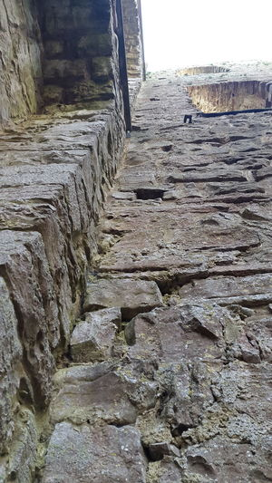 Architectural Column Borgholm Borgholms Slottsruin Borgholmslott Corner Corridor Day Entrance History Narrow No People Outdoors Staircase Steps Steps And Staircases Stone Stone Material Stone Wall Stonewall Surface Level Sweden The Way Forward Tourism View From Below